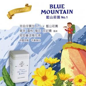 藍山 NO1 +包裝圖